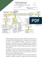 Reporte2 Codices