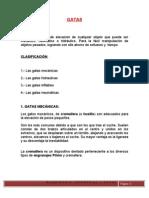 GATAS (Informe Final)