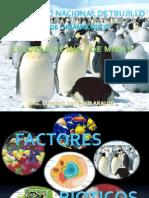 FACTORES BIOTICOS (EXPOSICION)