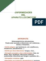IB Enfermedades AP Loc