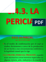 6.4.3. PERICIAL