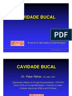 ANATOMIA CAVIDADE BUCAL