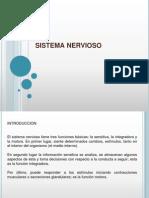 fsistemanervioso-091130080745-phpapp02