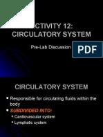 Activity 12_prelab CV System