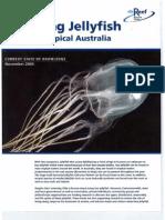 Stinging Jellyfish