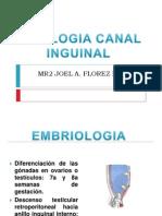 Patologia Canal Inguinal Resumen