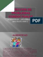 DETECCION DE PROBLEMAS CONDUCTUALESlñkl olga y roberto
