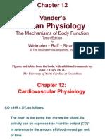 Fisiologia Cardiovascular (1)