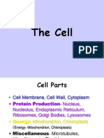 Cell Presentation Full