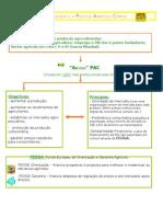 A agricultura portuguesa e a Política Agrícola Comum 1
