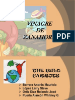 Presentación Vinagre de Zanahoria.pptxoooooo