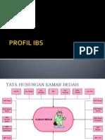 PROFIL IBS
