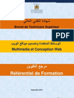 Multimedia Conception Web