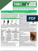 Pest Press Ants