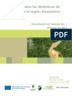 Línea base sobre las dinámicas de desarrollo dela región Amazónica colombiana