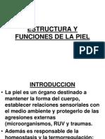 1 - Estructura y Funciones de La Piel - Edit
