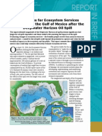 Approaches for Ecosystem Services Valuation for the Gulf of Mexico After the Deepwater Horizon Oil Spill