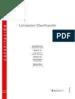 Apuntes Lixiviaxión-Clasificación