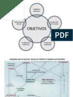 Biogas .quimica organica[1]