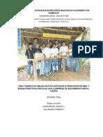 15867216-Proyecto-APISVA
