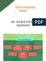 Derecho Proceso Penal - Wilber Espino