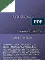 2.15 Pares Craneales