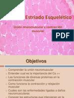 musculo esqueleticolisto