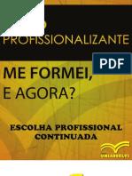 etapa_3_-_escolha_profissional