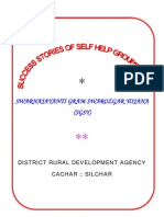 Success Stories of Sgsy Cachar