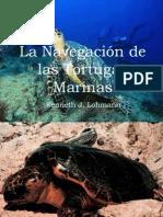 La Navegación de las Tortugas Marinas real