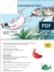 The Rainbow Fish - English