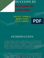 Otros Tipos de Extraccion Del Petroleo 1229534439859245 1