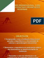 APRENDIZAGEM ORGANIZACIONAL  COMO FATOR DE SUCESSO NAS ORGANIZAÇÕES - SLIDES -