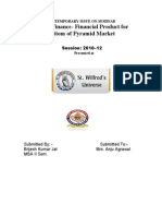 Brijesh Kumar Jat - Micro Finance- Financial Product for Bottom of Pyramid Market