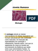 Miologia aula1