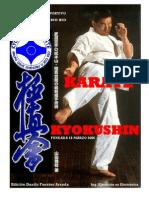 Sere Un Kyokushin
