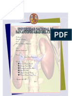 Sindrome Cardio Renal