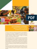 Las variedades nacionales ganan su lugar en huertas familiares de Argentina