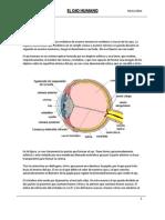 El ojo humano - Características y Defectos de la visión