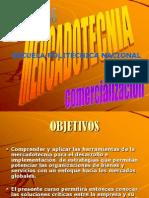 Mix de La Mercadotecnia 2010