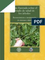 Guia ilustrada sobre el estado de salud de los Arboles (FAO)