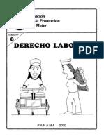 Derecho Laboral (Derechos de La Mujer Domestic A)