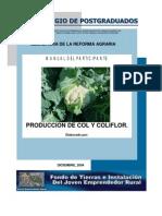 Produccion Col y Coliflor