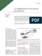 Tratamiento y Rehabilitacion de Las Lesiones de Nervios Perifericos