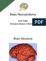 Basic+Neuroanatomypart1[1]