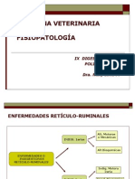 IX DIGESTIVO POLIGASTRICOS