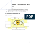 Chapter 14 Animal Receptor Organ (the Eye) - Lecture Notes