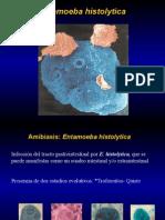 3raclase-Histolytica Salud Ambiental