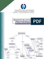 Diagrama de Conceitos_Proteínas