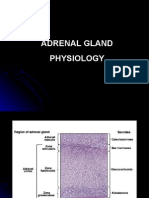 Adrenal Gland Physiology (Dr